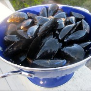 GETTIN' MESSY with MOULES MARINIÈRE